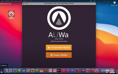 ALiWa Development Report